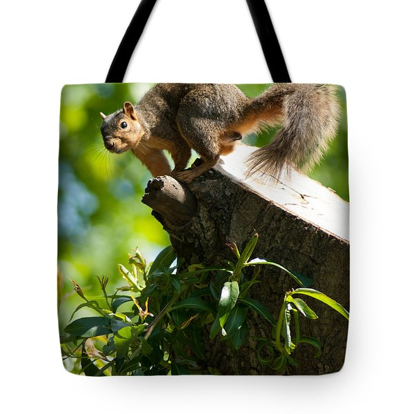Jump Tote Bag by Optical Playground By MP Ray