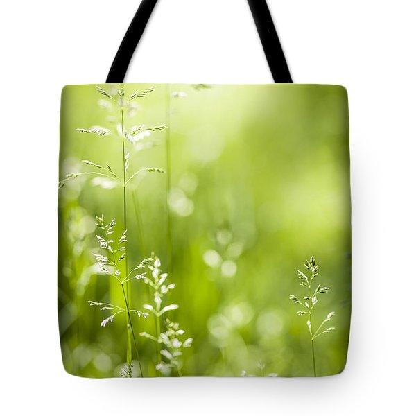 June green grass  Tote Bag by Elena Elisseeva