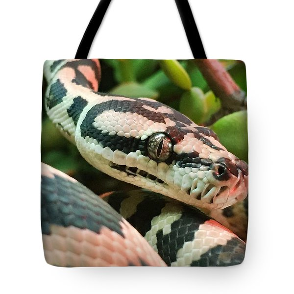 Jungle Python Tote Bag by Kelly Jade King
