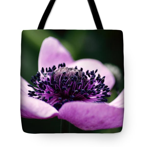 Just A Small Reach Tote Bag by Emily Enz