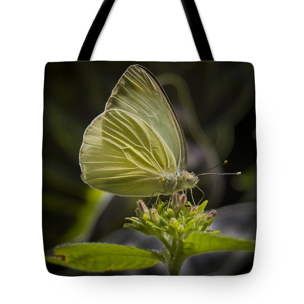 Just A Taste Tote Bag by Jean Noren