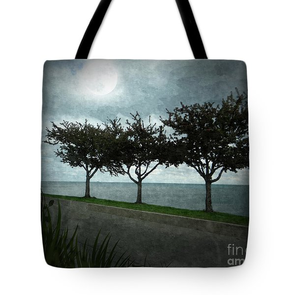 Just Another Gloomy Day Tote Bag by Bedros Awak