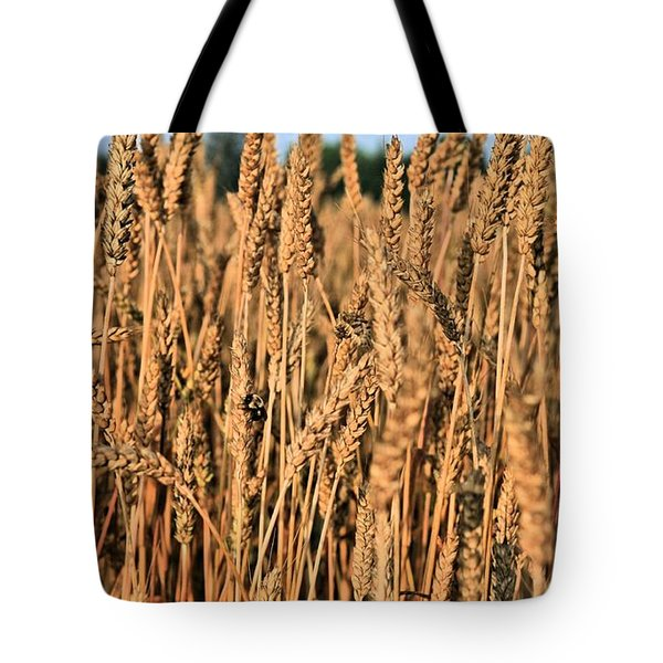 Just Wheat  Tote Bag by JC Findley
