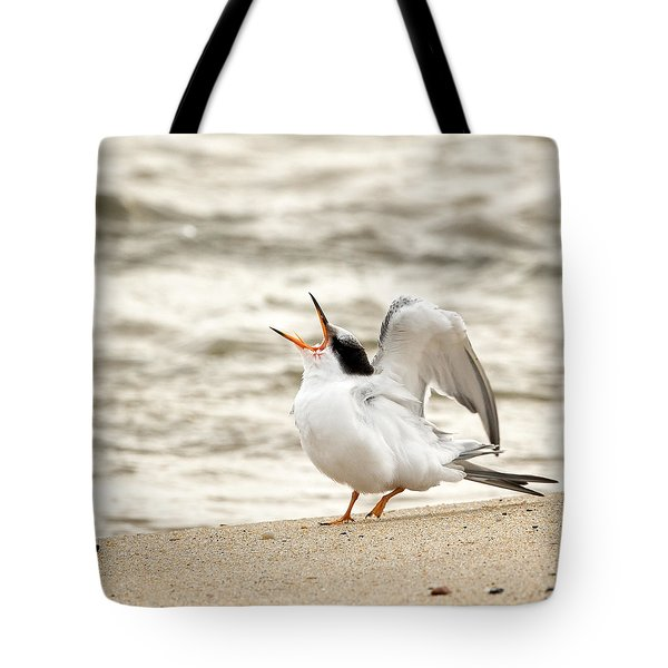 Juvenile Common Tern Square Tote Bag by Bill  Wakeley
