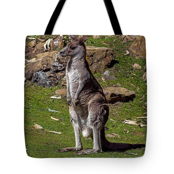Kangaroo Tote Bag by Garry Gay