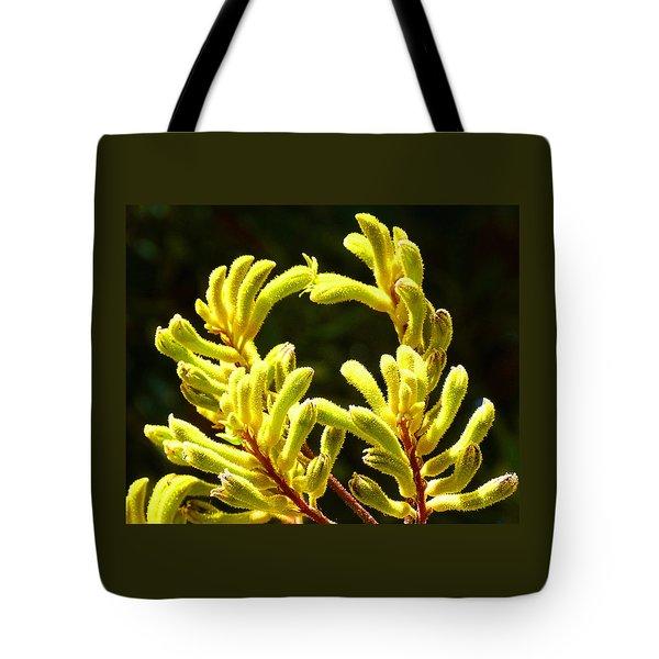 Kangaroo Paw Yellow Tote Bag by Margaret Saheed