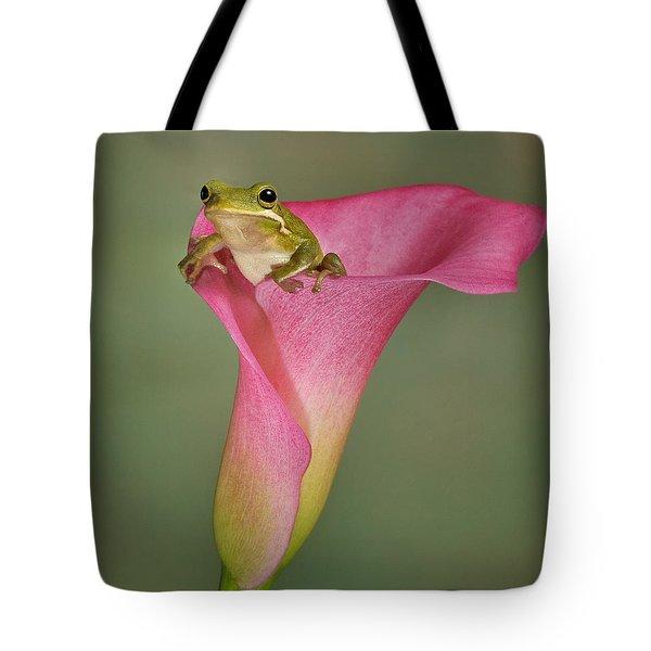 Kermit Peeking Out Tote Bag by Susan Candelario