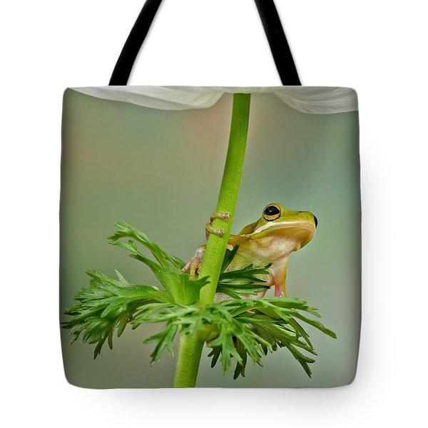 Kermits Canopy Tote Bag by Susan Candelario