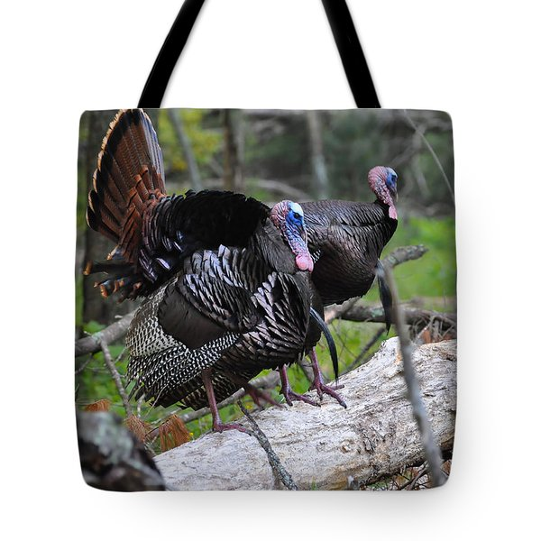 King of Spring Tote Bag by Todd Hostetter