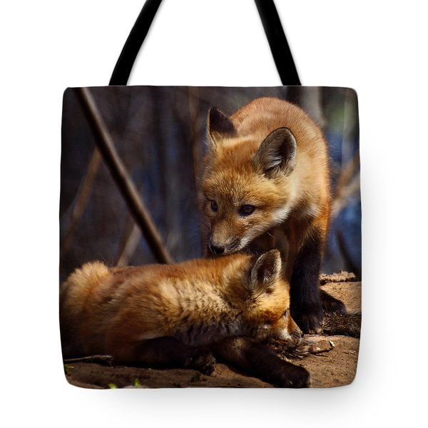 Kit Foxes Tote Bag by Thomas Young