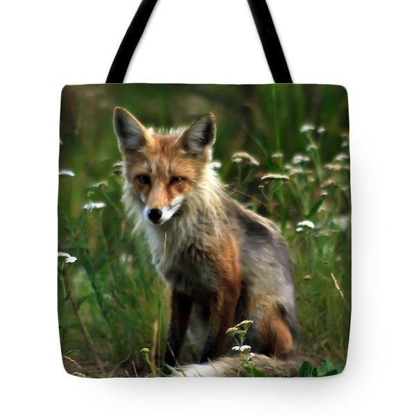 Kit Red Fox Tote Bag by Robert Bales
