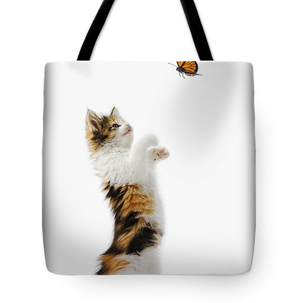 Kitten And Monarch Butterfly Tote Bag by Wave Royalty Free