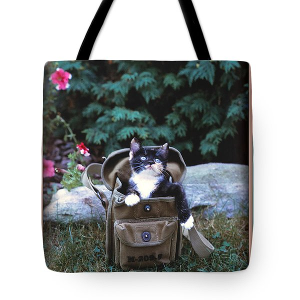 Kitten In A Canvas Bag Tote Bag by Patricia Keller