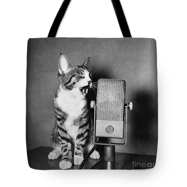Kitten On The Radio Tote Bag by Syd Greenberg