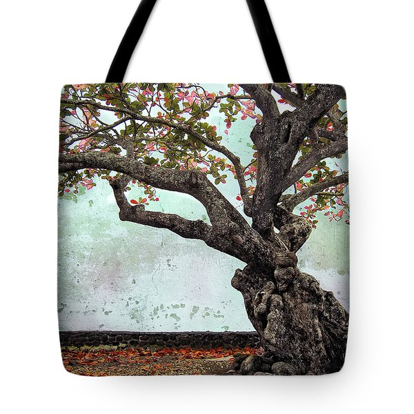 KNOTTED TREE Tote Bag by Daniel Hagerman