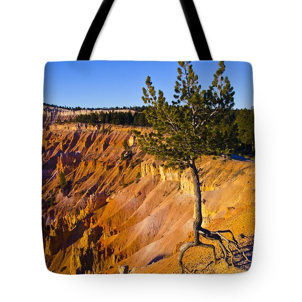 Know Your Roots - Bryce Canyon Tote Bag by Jon Berghoff