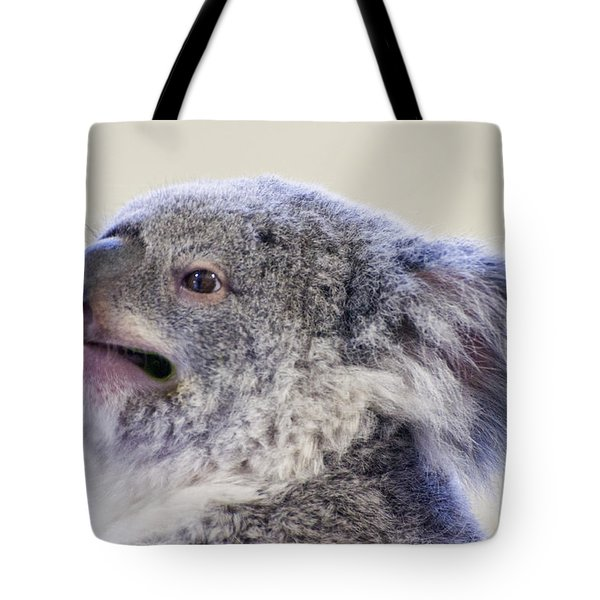 Koala Close Up Tote Bag by Chris Flees