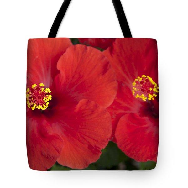 Kokio Ulaula - Tropical Red Hibiscus Tote Bag by Sharon Mau