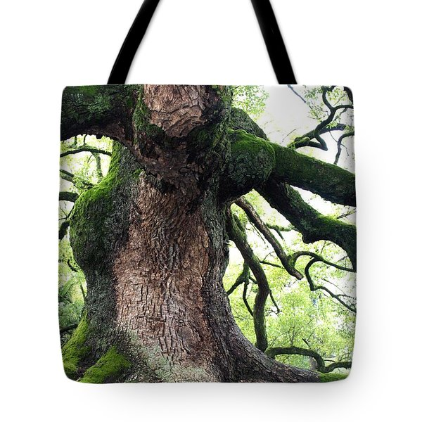 Kyoto Temple Tree Tote Bag by Carol Groenen