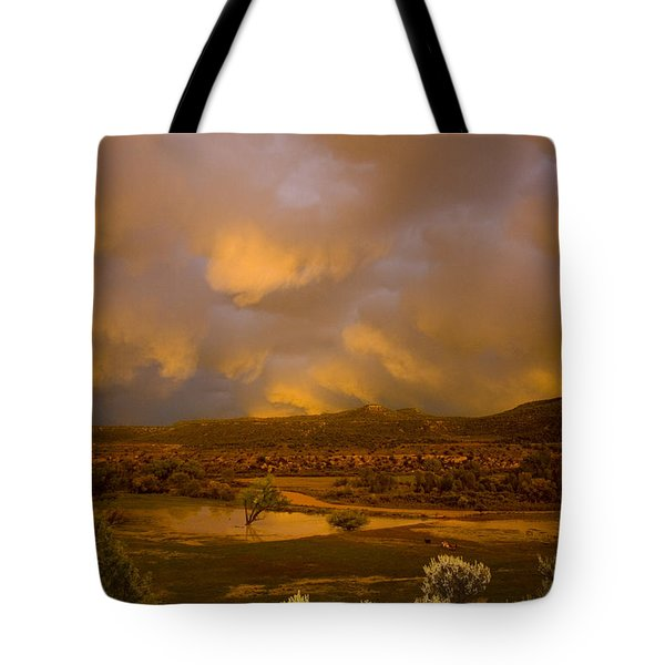 La Boca Rain Tote Bag by Jerry McElroy