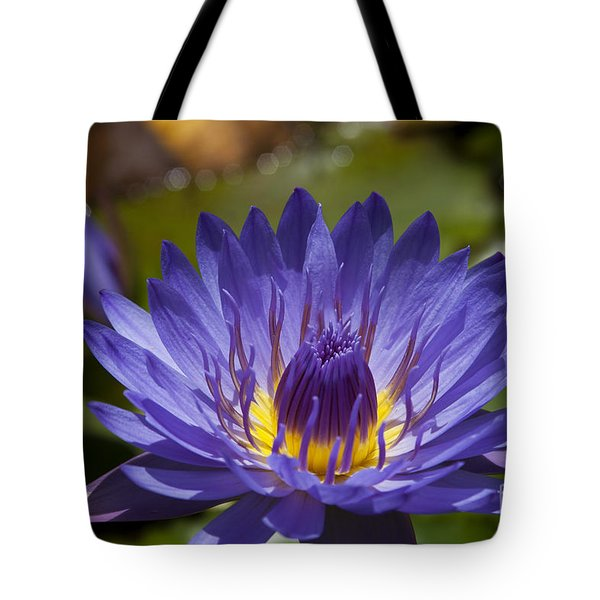 La Fleur De Lotus - Star Of Zanzibar Tropical Water Lily Tote Bag by Sharon Mau