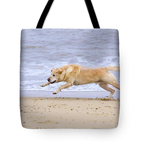 Labrador Dog Chasing Ball On Beach Tote Bag by Geoff du Feu