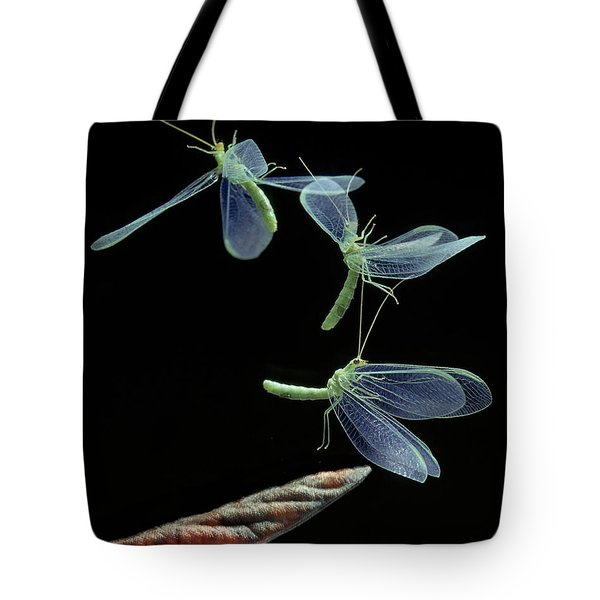Lacewing Taking Off Tote Bag by Stephen Dalton