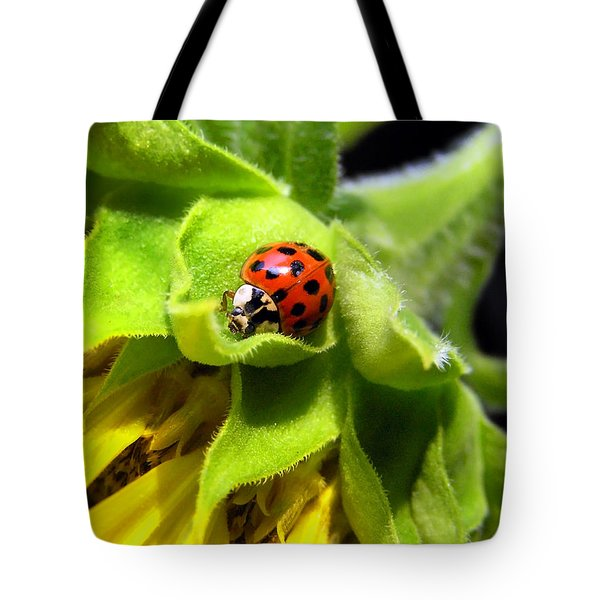 Lady Beetle Tote Bag by Christina Rollo