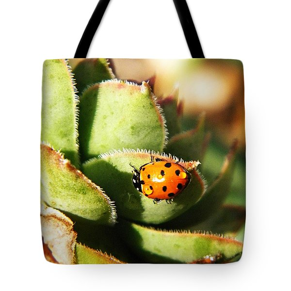 Ladybug And Chick Tote Bag by Chris Berry