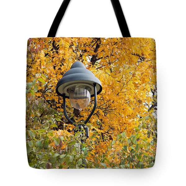 lamp in the autumn leaves Tote Bag by Michal Boubin