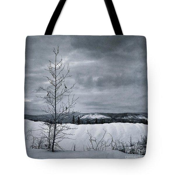 land shapes 15 Tote Bag by Priska Wettstein