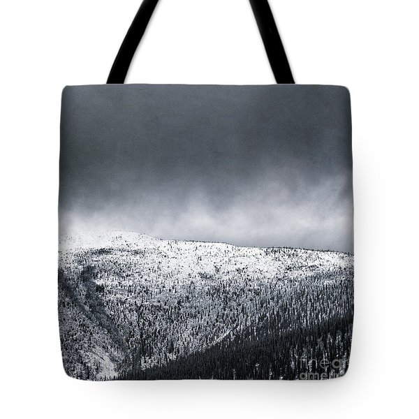 Land Shapes 2 Tote Bag by Priska Wettstein