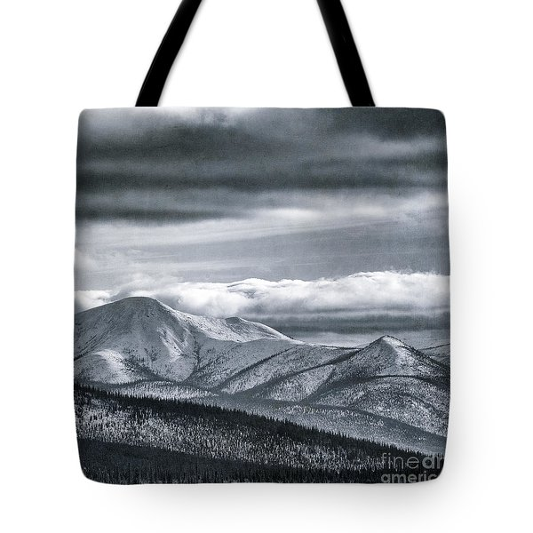Land Shapes 4 Tote Bag by Priska Wettstein