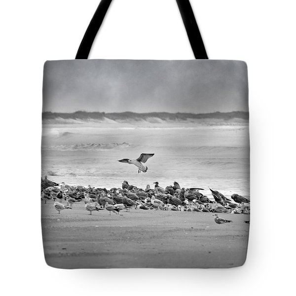 Landing In A Blur Tote Bag by Betsy C  Knapp