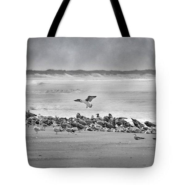 Landing In A Blur Tote Bag by Betsy C  Knapp