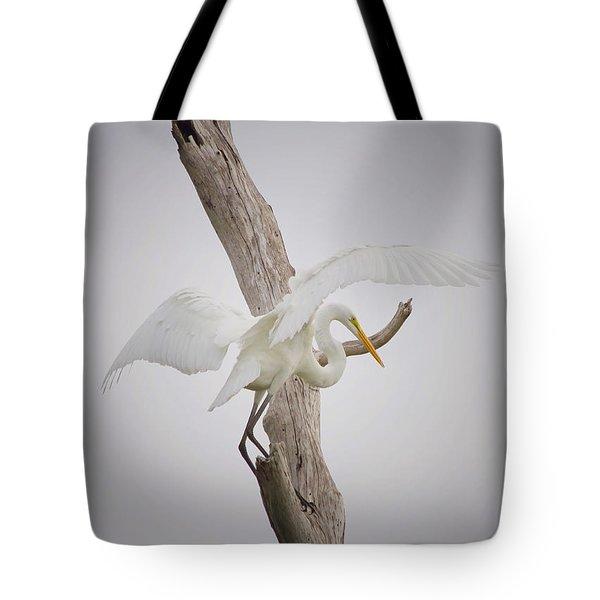 Landing Tote Bag by Kim Hojnacki