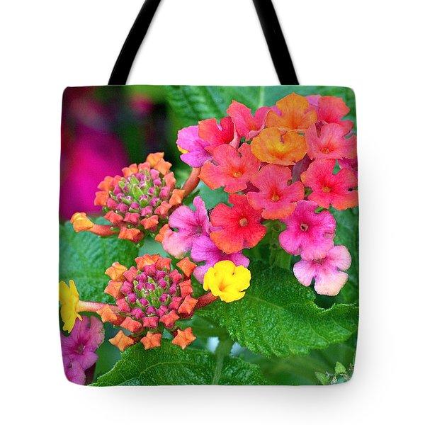 Lantana Tote Bag by Rona Black