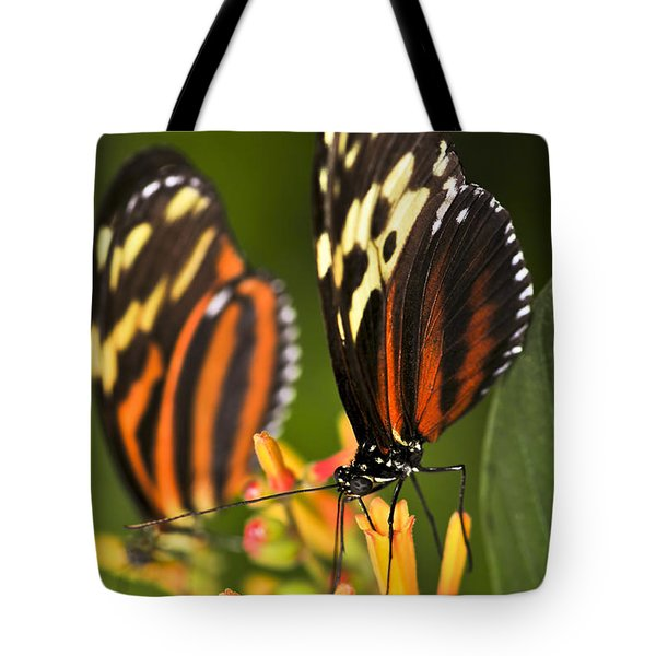 Large Tiger Butterflies Tote Bag by Elena Elisseeva