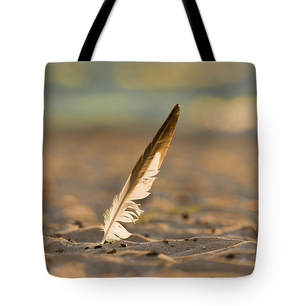 Last Days Of Summer Tote Bag by Sebastian Musial