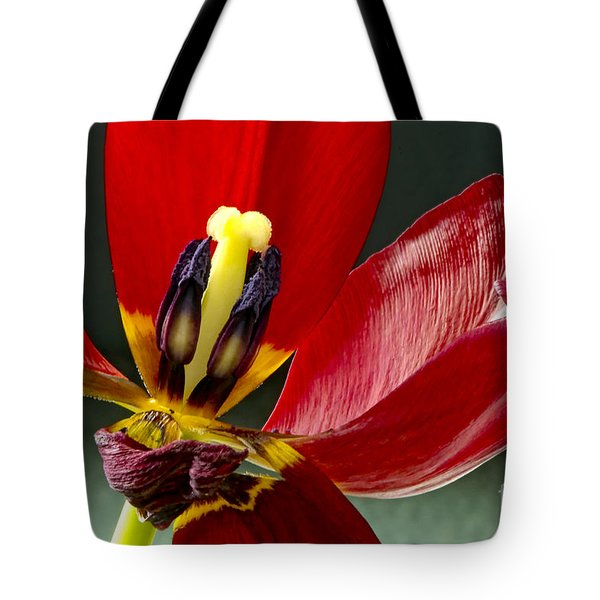 Last Days Tote Bag by Sharon  Talson