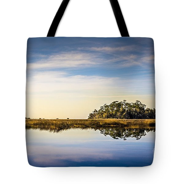 Late Day Hammock Tote Bag by Marvin Spates