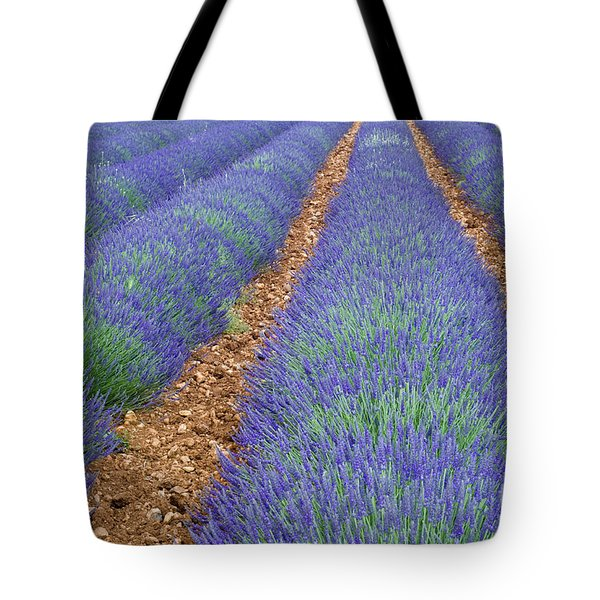 Lavendel 2 Tote Bag by Arterra Picture Library