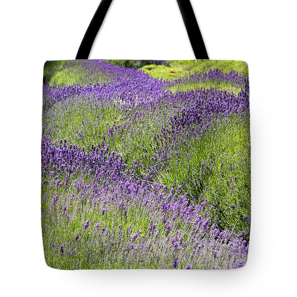Lavender Day Tote Bag by Kathy Bassett
