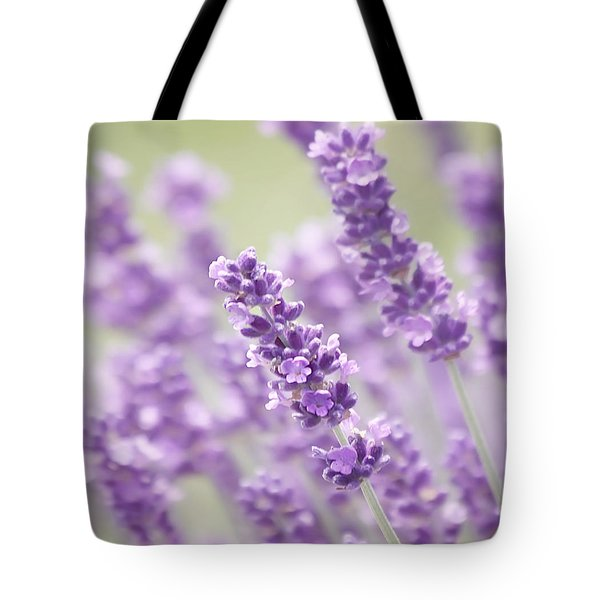 Lavender Dreams Tote Bag by Kim Hojnacki