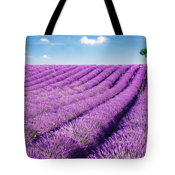 Lavender field and tree in summer Provence France. Tote Bag by Matteo Colombo