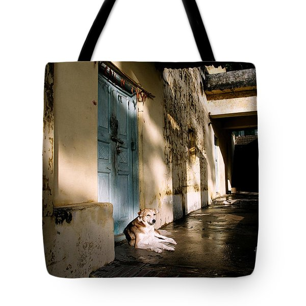 Lazy Dog Resting In The Afternoon Tote Bag by Eldad Carin