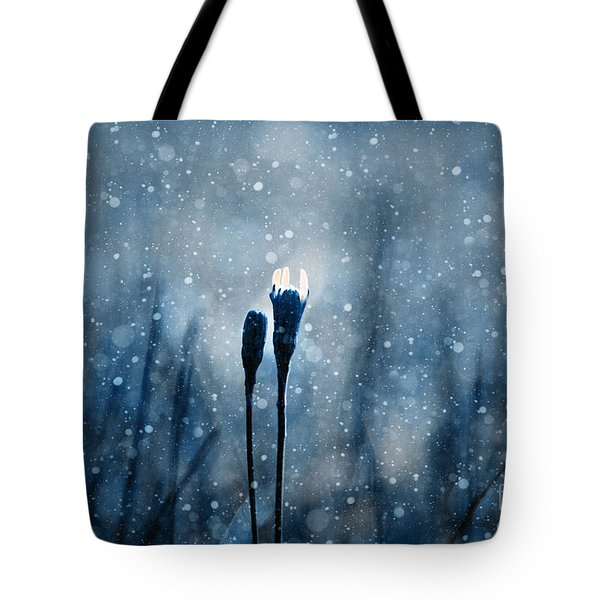 Le Centre De L Attention - S02-01at3b Tote Bag by Variance Collections