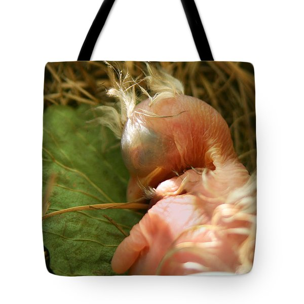 Leaf Pillow Tote Bag by Shane Holsclaw