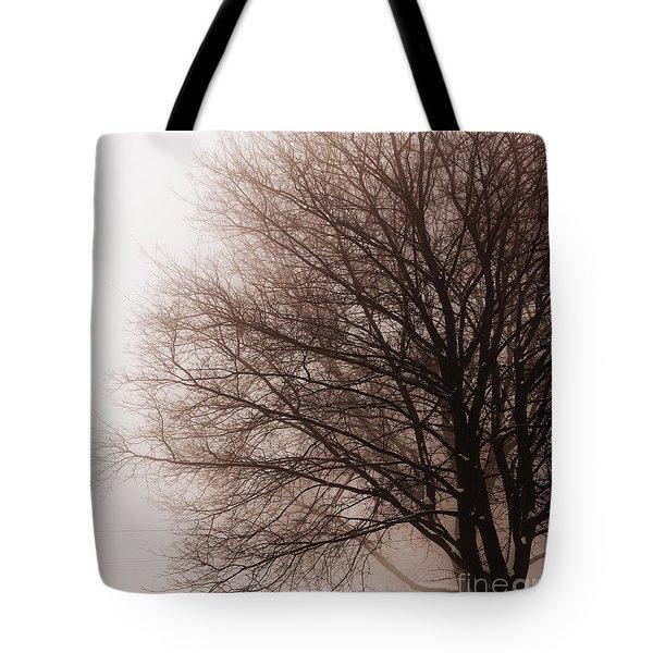 Leafless Tree In Fog Tote Bag by Elena Elisseeva