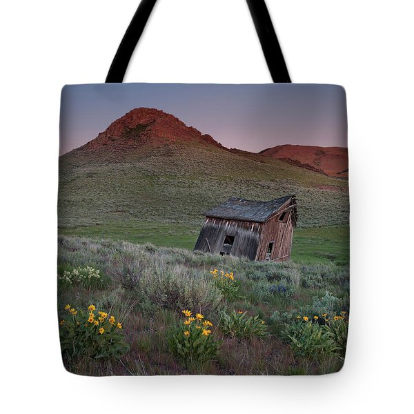 Leaning Shed Tote Bag by Leland D Howard